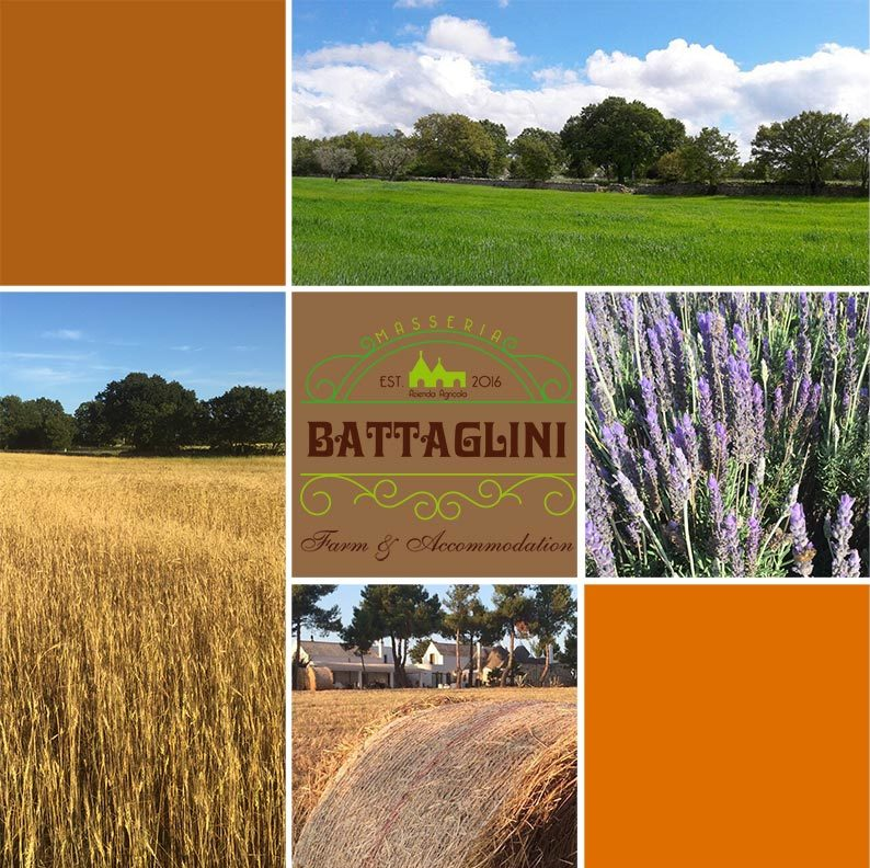 Azienda agricola Masseria Battaglini - Martina Franca (TA) Puglia
